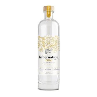 Hibernation Gin Dyfi 45% 50cl thumbnail