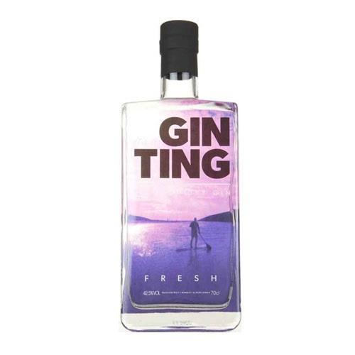 Gin Ting Premium Dry Gin 70cl Image 1