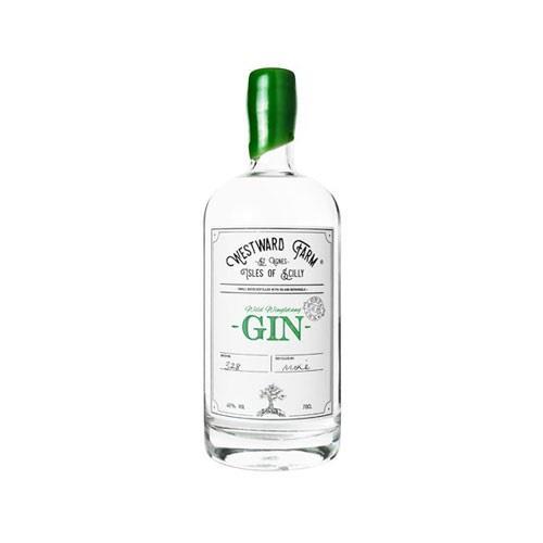 Westward Farm Wild Wingletang Cornish Gin 40% 35cl Image 1